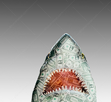 A money shark rises up against a gray background in a stock photo about investment dangers, loan sharking, and financial risks.