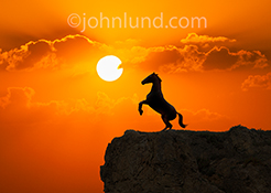 A horse rears at the edge of a cliff, silhouetted against an orange sunset, in a stock photo about strength, power and leadership.