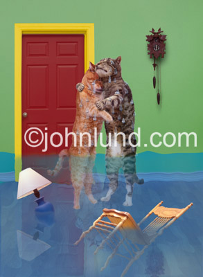 Stock photo and funny animal picture of two cats crying a room full of tears. A wooden chair is floating in the water and so too is a table lamp.