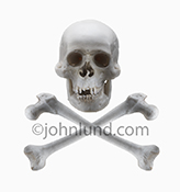 A classic skull and crossbones, on white, stock photo.