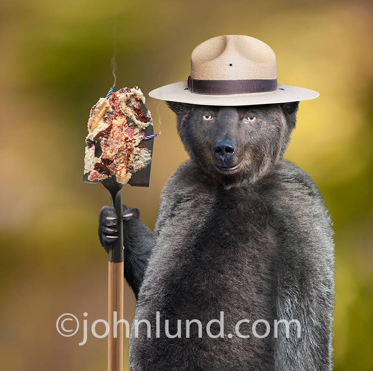 Smokey the bear holds a shovel covered in the remains of a birthday cake, complete with smoldering candles, in a parody stock photo of why you don't invite Smokey to your birthday party!