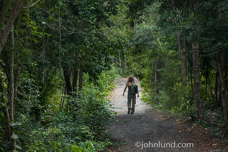 A strong woman hikes alone through a jungle in a metaphor for issues relating to the emergence of women who are owning their power and striking out with confidence in an effort to make the world a better place for both men and women.
