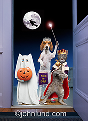 A hlloween greeting card image, this photo features two dogs and two cats standing at the door in costume and ready for their treats.