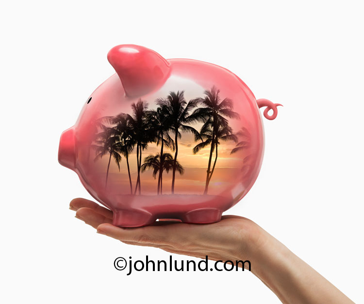 The piggy bank in this image is seen with tropical palm trees inside making the image an ideal one for referencing vacation savings, travel finance, and even retirement investing.