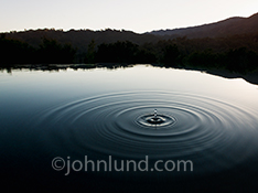 A water drop hangs suspended in time, ripples spreading out beneath it, over a tranquil lake at sunset in an image about meditation, spirituality, and water issues.