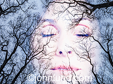 A woman's face appears in a winter sky through barren trees in a surreal image about beauty, dreams and fantasy.
