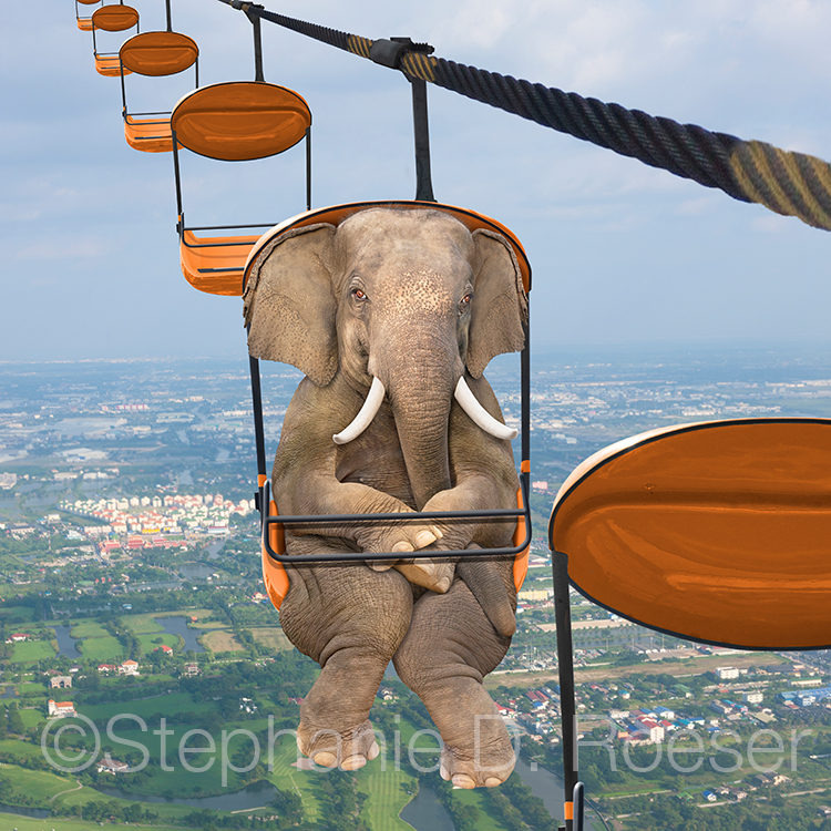 An elephant is squeezed into a tram ride high above the countryside in a humorous greeting card image and stock photo about possibilities and the unexpected.