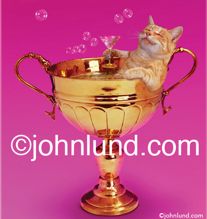 Picture of a cat soaking in a goblet.  An adorable orange tabby is reclining in a large gold cup, taking a bubble bath?  He has a martini glass in his paw and looks totally content. Silly cat photos.