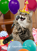 Happy Purrthday is the caption in this greeting card image of a cat singing into a microphone surrounded by birthday balloons and gifts.