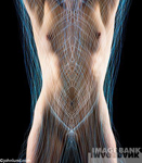 A nude woman's torso shown with flowing streaks of light threading around and through the torso for representing things like energy and auras.