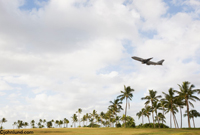 Picture of a jet plane flying over palm trees in a tropical environment in a concept image about travel, vacations and getting away.