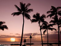 Picture of a tropical sunset over an idyllic beach in Hawaii. Tiki torches, palm trees, a setting sun and still ocean waters make for an idyllic vacation photo.
