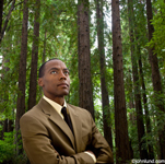 An African American business executive stands in a forest looking upwards and contemplating environmental issues. The man is dressed in a smart business suit with his arms folded across his chest.