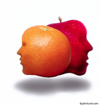 An apple and an orange that have faces. They are funny faces, as study in contrasts? The images are floating above a white background and they have shadows.