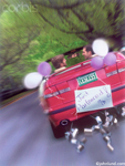Picture of a gay couple driving away in a red convertible with tin cans and balloons attached.