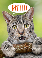 A cute kitty hangs from a branch and counts his remaining lives in this funny cat photo created as a stock photo and humorous greeting card image.