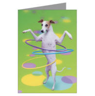 Hoop Dog Greeting Cards (Pk of 10)