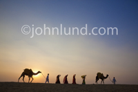 A caravan of camels and people cross the desert sand dunes of Rajasthan, India as the sun sets behind them.