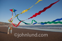 A couple enjoys each other's company as they fly a colorful kite on the beach.