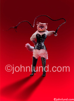 LOL cat Photo of a kitty wearing a dominatrix costume and wielding a whip as she stands on a red background. She is dressed in a leather corset and tall leather boots. Picture of a feline dominatrix.