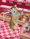 Funny photo of a cat standing in a bakery in front of the deserts and telling us something important.