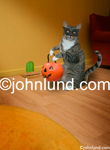 Funny animal picture of a hlloween cat holding a pumpkin for carrying his trick or treats and standing before a mouse hole in a wall.
