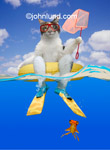 Funny animal stock photo of a cat fishing from an inflatable tube-raft or raft with a goldfish looking up from underneath.