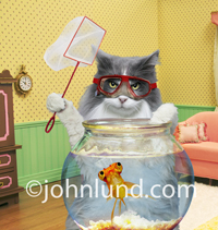 A funny picture of a cat wearing a scuba mask and holding a fish net as he stands behind a nervous looking goldfish in a fish bowl.
