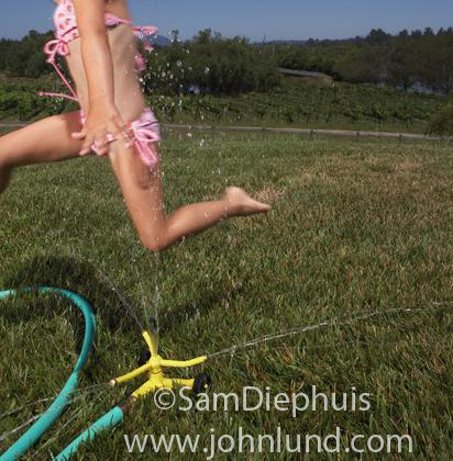 A pre-teen young girl in a pink bikini bathing suit is running through the water being sprayed by a lawn sprinkler on a hot summer day.