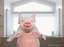A smug looking anthropomorphic pig has just applied her lipstick in this humorous image about deception, disguise, and things that are not what they appear to be.