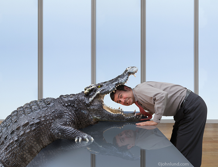 A businessman puts his head in a crocodile's mouth in a funny stock photo about risk, danger, daring and more.