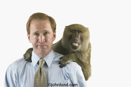A despondent woman stands in corporate offices with a monkey on her back in this funny business photo.