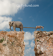 An elephant and a donkey square off in a tug of war on each side of a steep cliff in a humors look at the politics of Republicans and Democrats in this image.