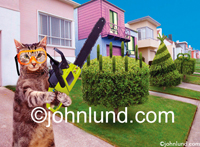 Funny picture of a cat wielding a chainsaw and trimming the hedges, shrubs and bushes into decorative shapes.