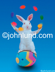 Stock photo of an easter bunny juggling jelly bean and standing on a decorated Easter Egg. A very talented white rabbit!