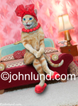 Stock photo of a cat sitting on the edge of a bed; This kitty is wearing a red hat, a red pop bead necklace, and red slippers.