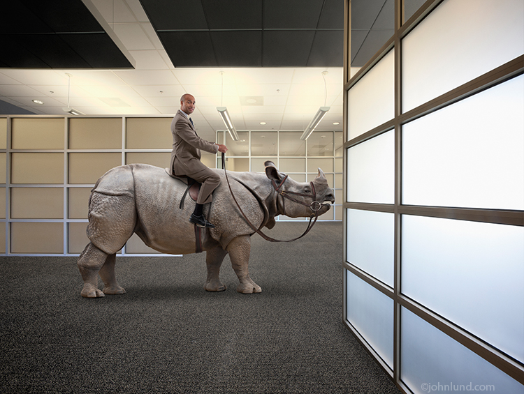 Picture of a businessman riding a rhinoceros in a corporate office.