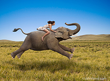 A woman in a flowing white dress, with her hair flying in the wind, rides an improbably galloping elephant across a grassy plain in an image about freedom and the unexpected.