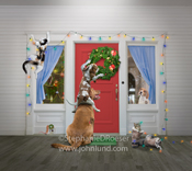 Three dogs, a cat and two kittens and a mouse decorate a house for Xmas in this funny, lol pet picture.