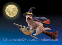 Funny picture of a dog and cat riding a witch's broom in front of a full moon in a  humorous Halloween greeting card image.