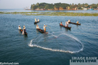 A group of fisherman in small two man boats are casting out the fishing nets on a nice summer day in India near Cochin.