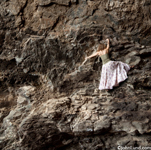 A woman in a long dress climbs the shear face of a rock cliff in an improbable and challenging endeavor. Picture of rock climbing woman. Health and lifestyle pics.