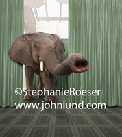 A Funny elephant stands in a convention hall representing the problem and or challenge that no one in an industry wants to admit or talk about.