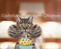 Birthday wishes are headed your way from this tabby cat with cheeks puffed out as he prepares to blow out a candle on a cup cake.